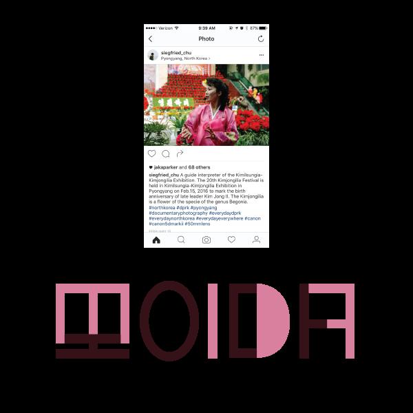moidacolorstudy-09